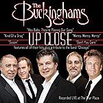 The Buckinghams Up Close (Live)