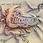 Chicago Hard Habit To Break / Remember The Feeling (Digital 45)