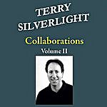 Terry Silverlight Collaborations, Vol. II