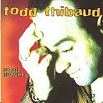 Todd Thibaud Dead Flowers