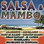 Tito Puente Salsa & Mambo