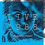 The Wedding Present Live 1988