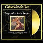 Alejandro Fernandez Colección De Oro