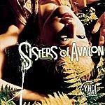Cyndi Lauper Sisters Of Avalon