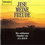 Helmuth Rilling Bach, J.s.: Jesu Meine Freude