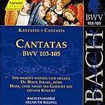 Peter Schreier Bach, J.s.: Cantatas, Bwv 103-105