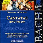 Andreas Schmidt Bach, J.s.: Cantatas, Bwv 195-197