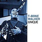 T-Bone Walker T-Bone Walker (Unique Series)