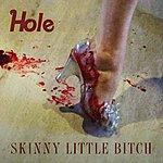 Hole Skinny Little Bitch (Single)