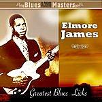 Elmore James Greatest Blues Licks