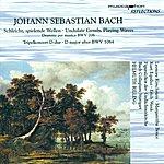 Helmuth Rilling Bach, J.s.: Schleicht, Spielende Wellen, Und Murmelt Gelinde / Triple Concerto, Bwv 1064