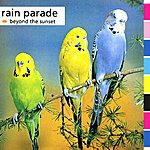 The Rain Parade Beyond The Sunset (Live In Tokyo, 1984)