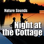 Nature Sounds Night At The Cottage (Nature Sounds)