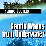 Nature Sounds Gentle Waves From Underwater (Nature Sounds)