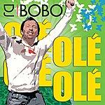 DJ Bobo Olé Olé Live
