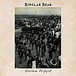 Bipolar Bear Harlem Pripyat