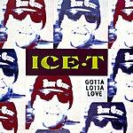 Ice-T Gotta Lotta Love (4-Track Maxi-Single)