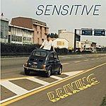 Sensitive Driving (Italo Rare) (Single)