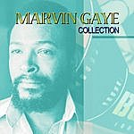 Marvin Gaye Best Of Tour