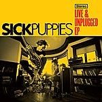 Sick Puppies Live & Unplugged