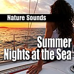 Natural Sounds Summer Nights At The Sea (Nature Sounds)