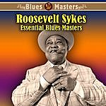 Roosevelt Sykes Essential Blues Masters