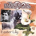 The Beer Mats Easter Lily
