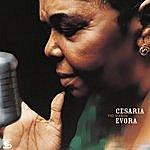 Cesaria Evora Voz D' Amor