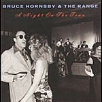 Bruce Hornsby & The Range Night On The Town