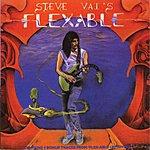 Steve Vai Flexable