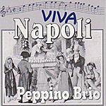 Peppino Brio Viva Napoli (Scapricciatiello)
