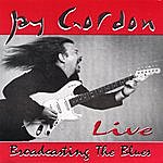 Jay Gordon Broadcasting The Blues