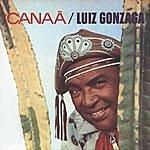 Luiz Gonzaga Canaã