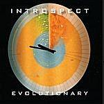 Introspect Evolutionary