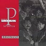 Bronco Serie Platino