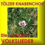 Tölzer Knabenchor Die Schönsten Volkslieder