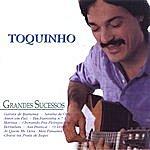 Toquinho Grandes Sucessos (Greatest Hits)