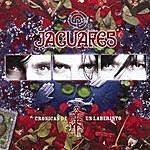 Jaguares Cronicas De Un Laberinto