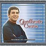 Gualberto Castro Tesoros De Coleccion - Gualberto Castro