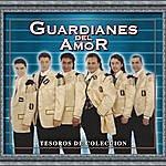 Guardianes Del Amor Tesoros De Coleccion - Guardianes Del Amor