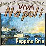 Peppino Brio Viva Napoli: Guapparia Catarì