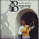 Benjamin Flamenco Light-Heavy