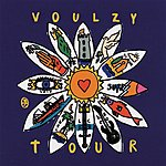 Laurent Voulzy Voulzy Tour (Live Zénith 1993)