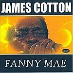 James Cotton Fanny Mae