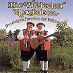 Die Wildecker Herzbuben Die Ewigen Juwelen Der Volksmusik