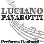 Luciano Pavarotti Luciano Pavarotti Performs Donizetti