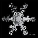 Snow The Snow