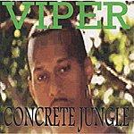 Viper Concrete Jungle