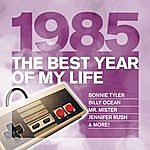 Alison Moyet The Best Year Of My Life: 1985