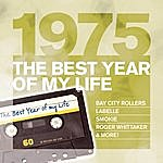 Al Stewart The Best Year Of My Life: 1975
